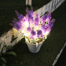 Lavender LED Lights 라벤더 LED 무드등